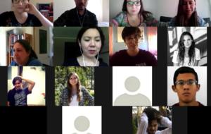 Imagen participantes webinar via zoom