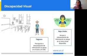 Detalle de tipos discapacidad visual: ceguera y baja visión