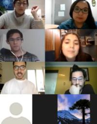 imagen zoom de la actividad, 12 personas con cámara prendida.